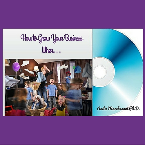 How to Grow Your Business When…CD cover with purple